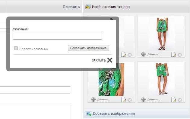Окно редактирования описания изображения