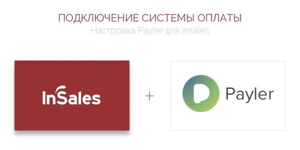 Краткая инструкция по настройке платёжного приложенния Payler